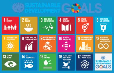 صورة ما التنمية المستدامة وما أهدافها؟